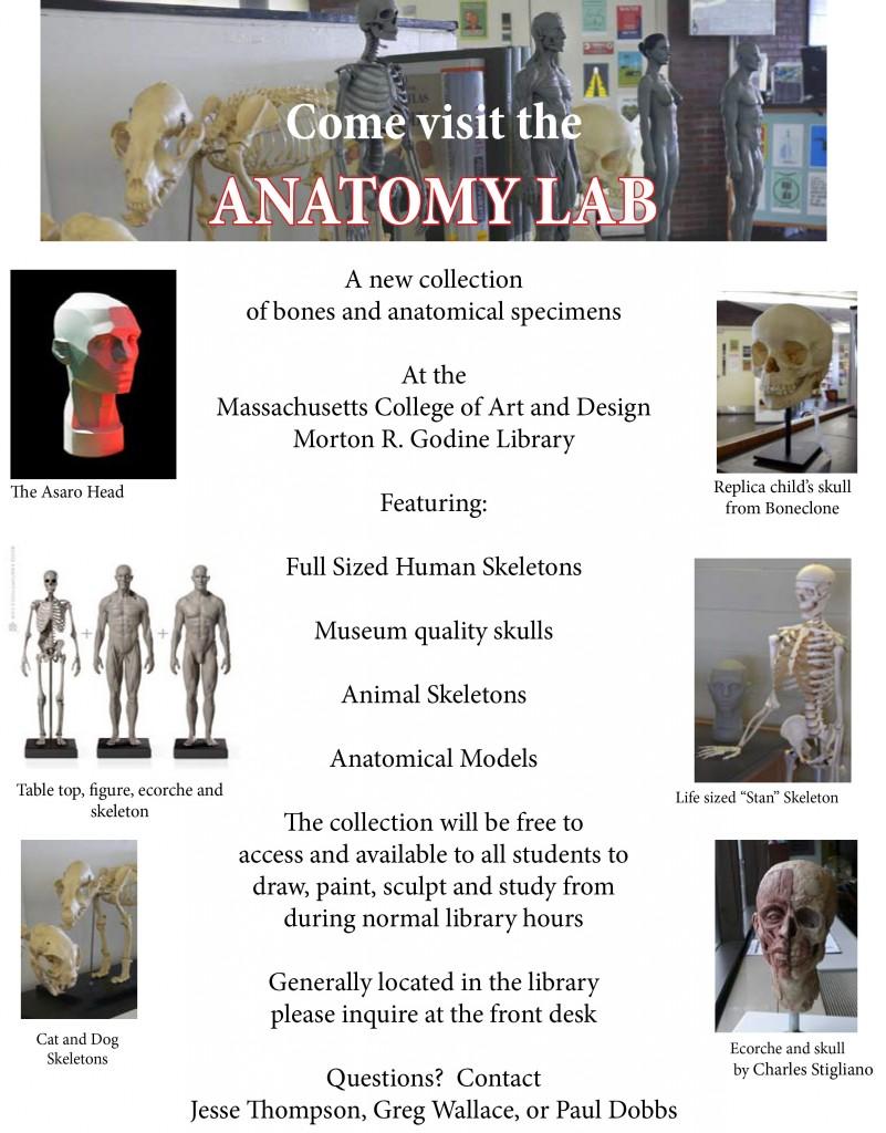 anatomy lab poster2