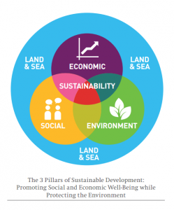 Sustainability in singapore assessing sustainability practices in sustainable development in singapore social eco naamloos malvernweather Choice Image