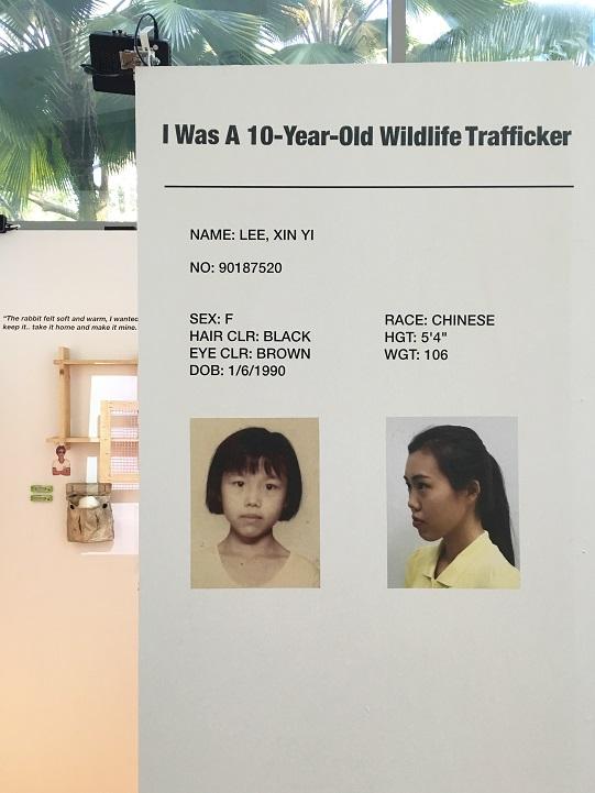 I Was A 10-Year-Old Wildlife Trafficker at NTU ADM Portfolio