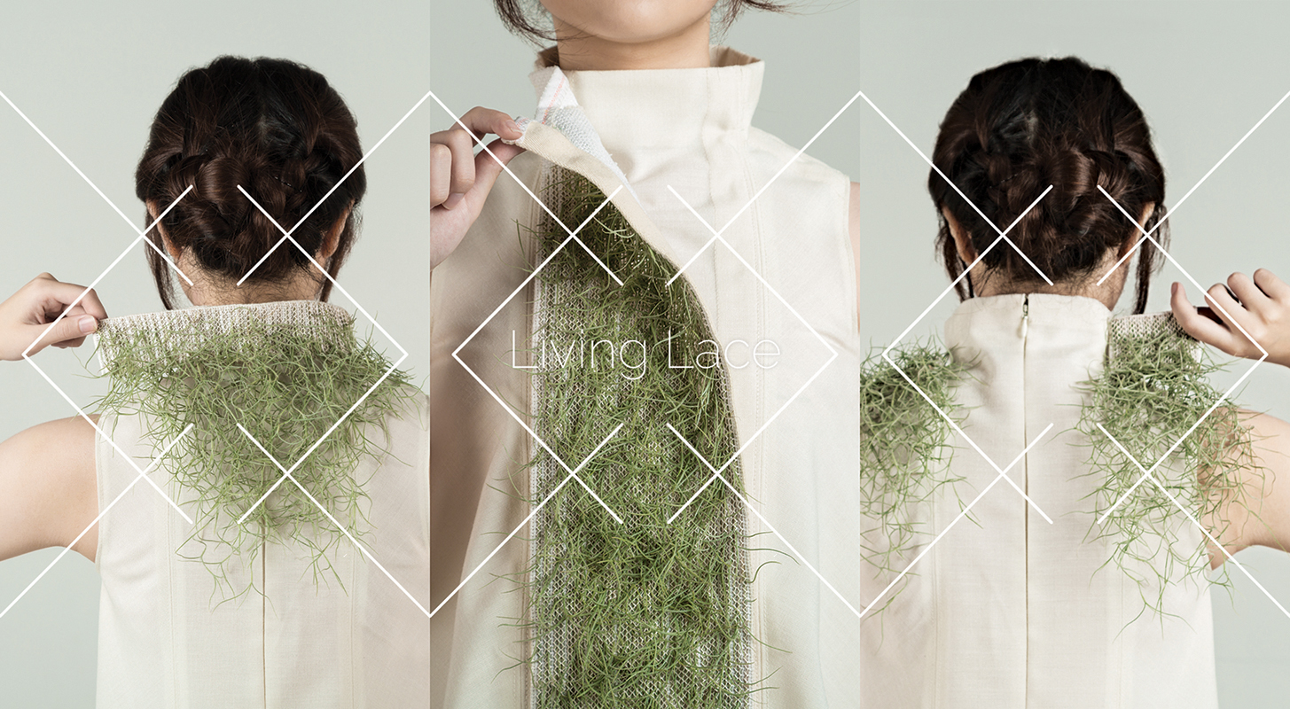 Living Lace at NTU ADM Portfolio