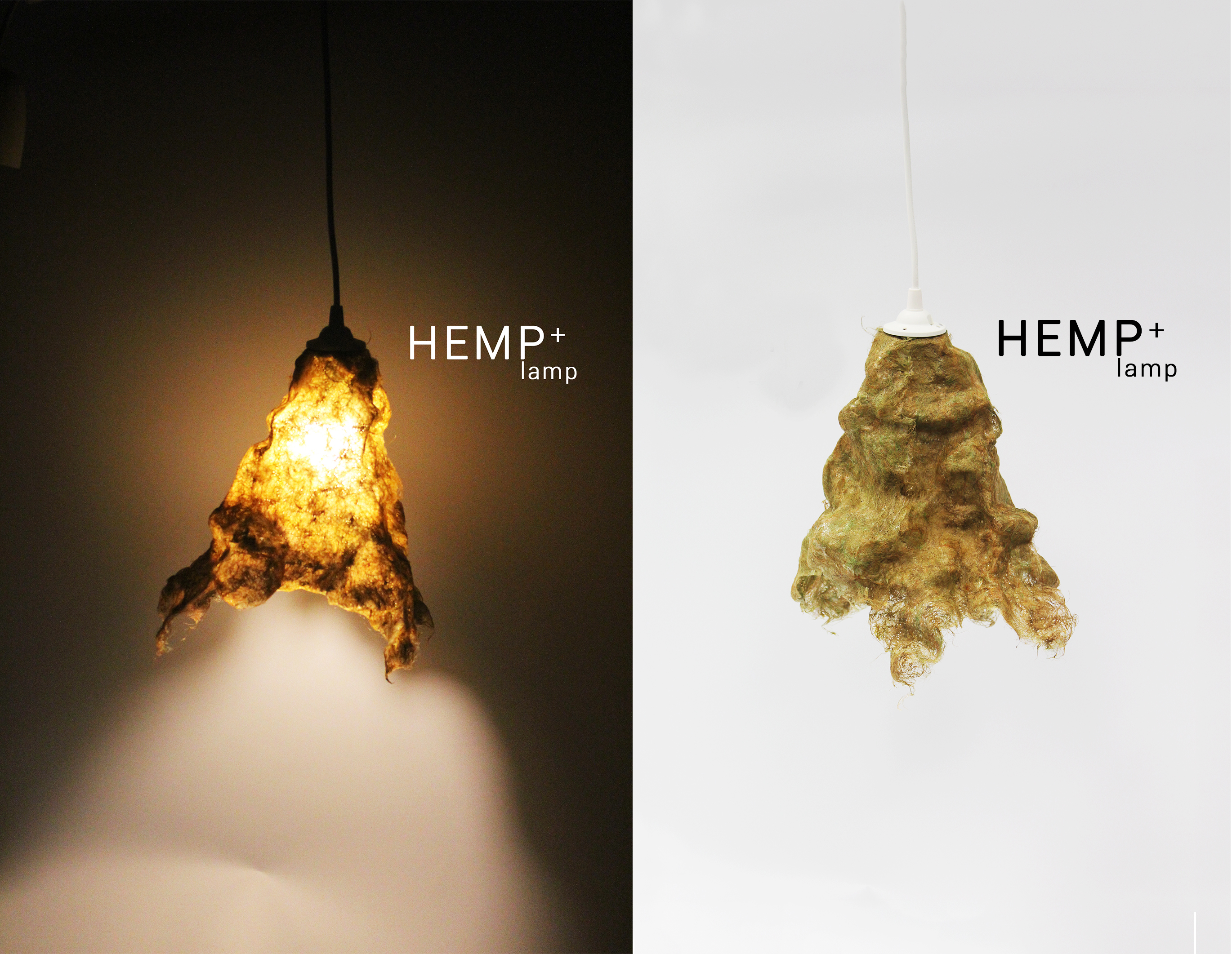 Hemp+ at NTU ADM Portfolio
