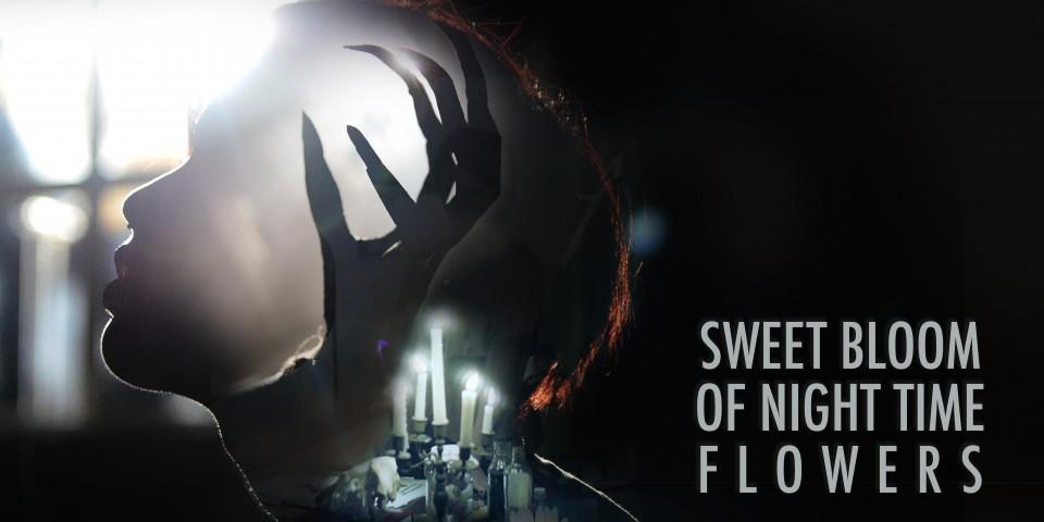 Sweet Bloom Of Night Time Flowers at NTU ADM Portfolio