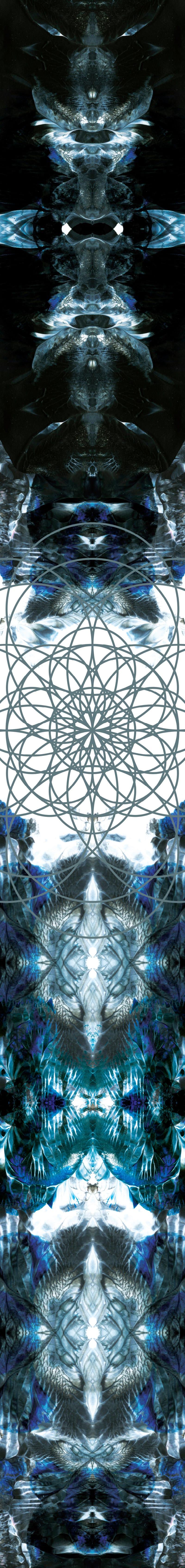 Life beyond earth at NTU ADM Portfolio