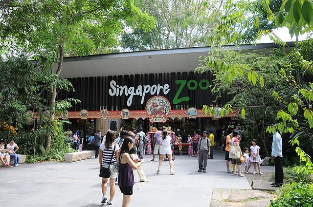 (Nature) Singapore Zoo