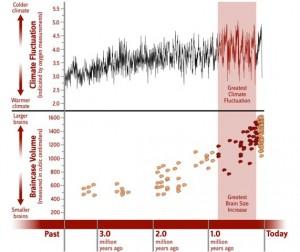Changes_Climate_Braincase_Volume_KC