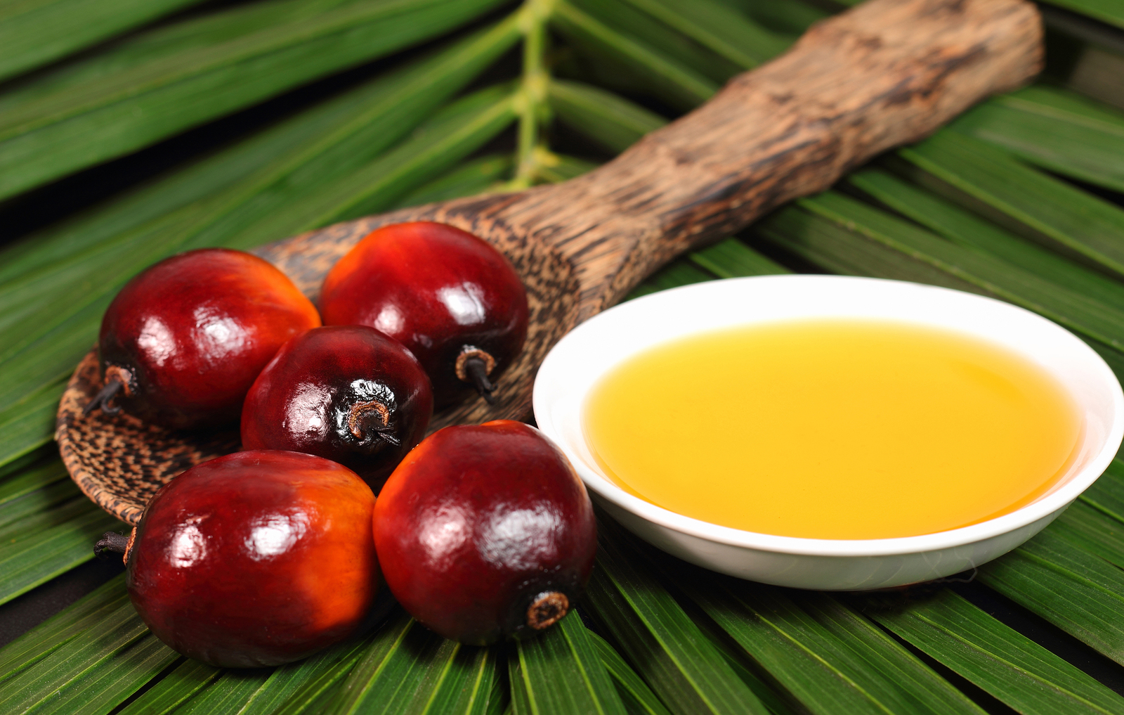 most healthy fruit in the world palm fruit oil