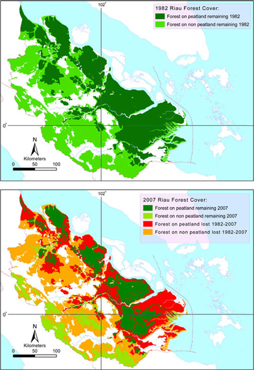 deforestation rate in southeast asia essay Deforestation is taking place at a rate of about 13 million hectares per year, according to the united nations food and agriculture organization that's an area about the size of greece deforestation is a major contributor to climate change, accounting for an estimated 25 percent of global greenhouse gas.