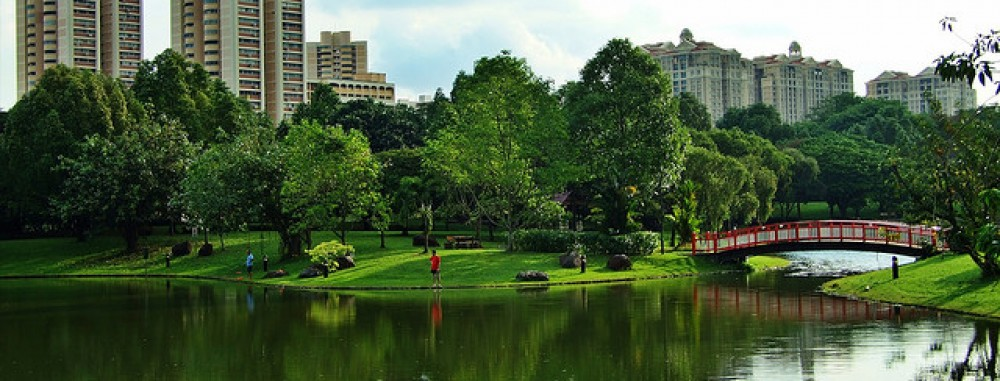 Nature Reserves and the Conservation of Singapore's Habitats