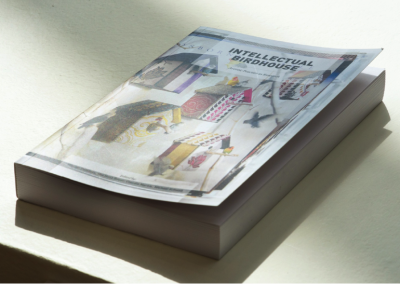 Intellectual Birdhouse: Artistic Practice as Research (2012) by Ute Meta Bauer