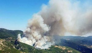 Forest fire in Muğla, Zeytinköy