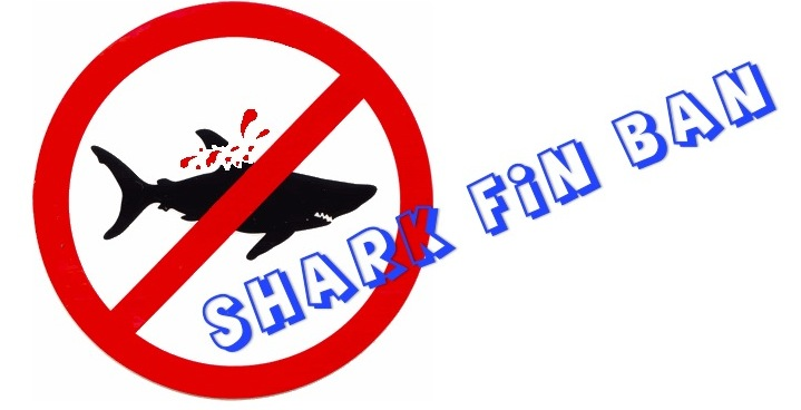 Laws and Regulations | Conservation of Sharks in Asia