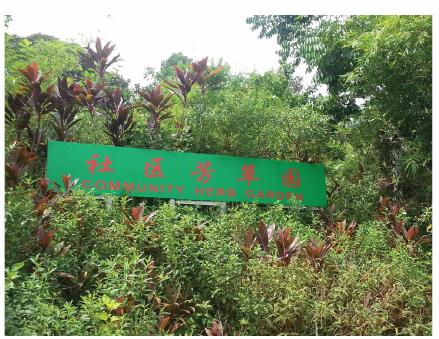 NTU Community Herb Garden