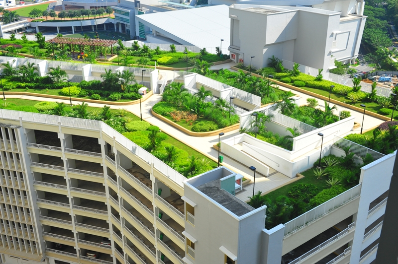 Mitigate Urban Heat Island Effect The Nature In Singapore