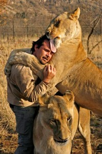 Richardson being hugged and licked by lionesses. Image from: http://www.pinterest.com/pin/555702041490824003/