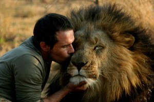 Richardson kissing one of his lions. Image from http://maulshri.com/kevin-richardson-lion-whisperer/