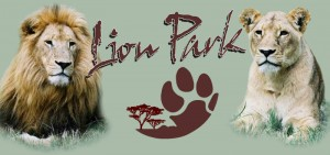 Lion Park. Image from http://www.villagegreenguesthouse.co.za/vgtours.html