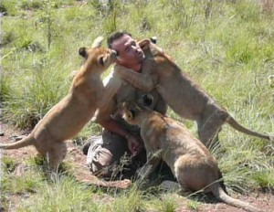 Richardson interacting with lion cubs. Image Source.