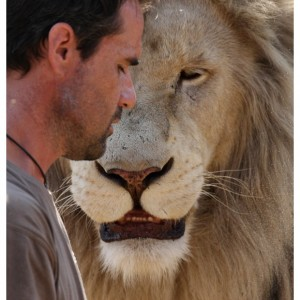 Richardson with a lion. Image from: http://pessimistincarnate.blogspot.sg/2010/10/lion-whisperer-kevin-richardson-and-his.html