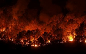 forest-fires-in-andalucia-destroy-12000-hectares-in-summer-2012