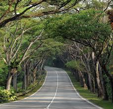 singapore natural heritage
