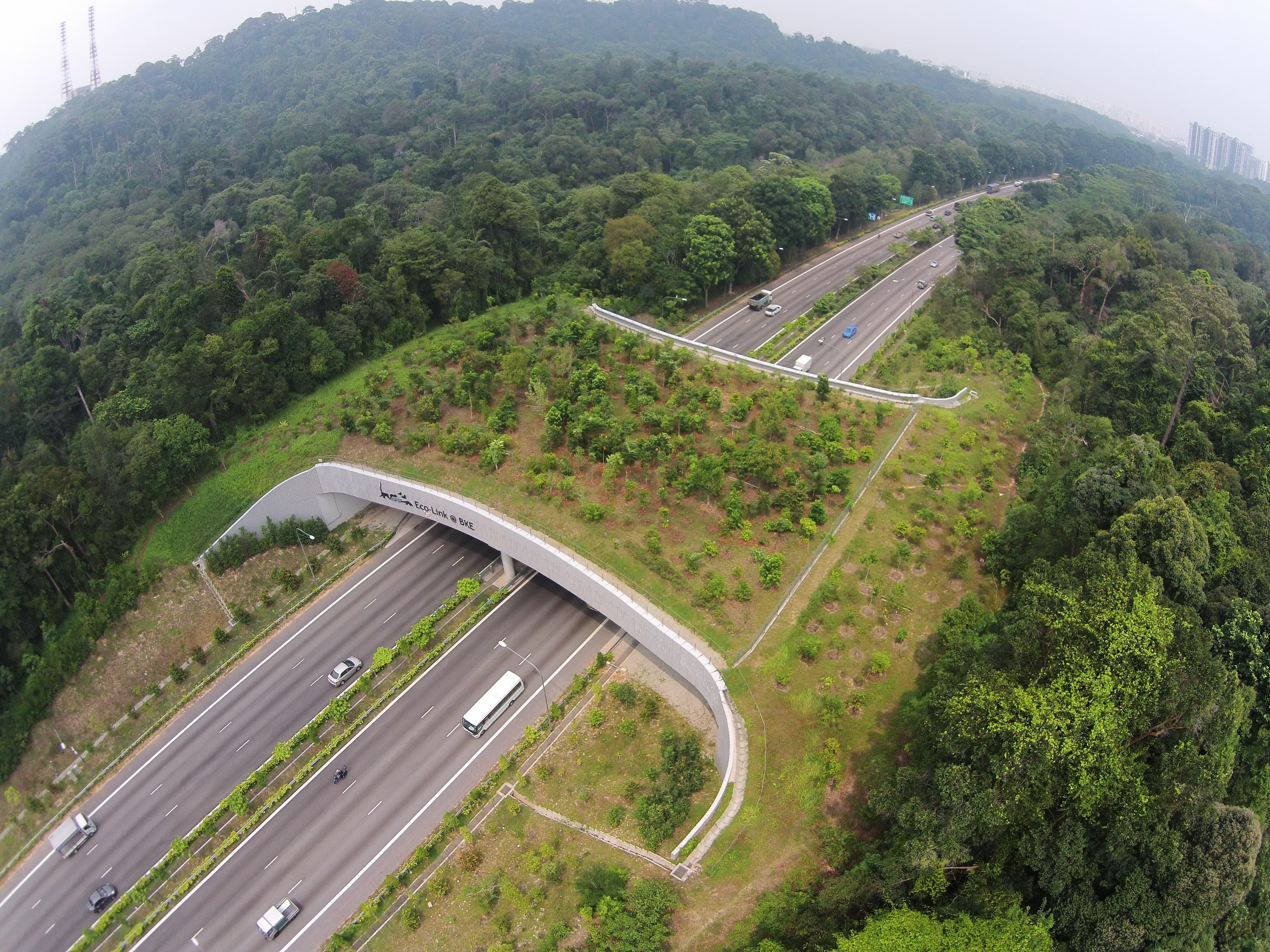 ecolinkbke singapores sustainable development plans