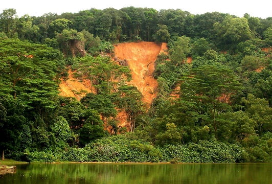 Slope failure at Bukit Batok 2006