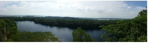 View from the highest natural lookout point on Ubin