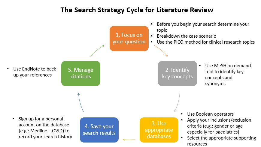 search-strategy-cycle