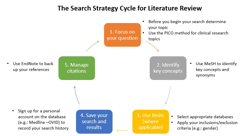 search-strategy-lit-review-cycle