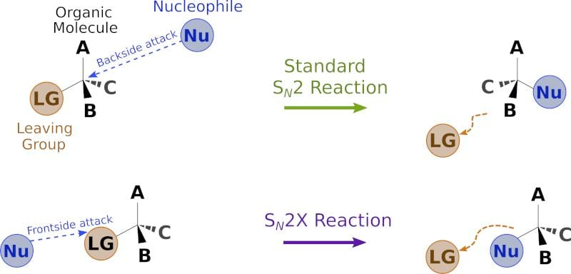 Up-ending a Fundamental Reaction in Organic Chemistry