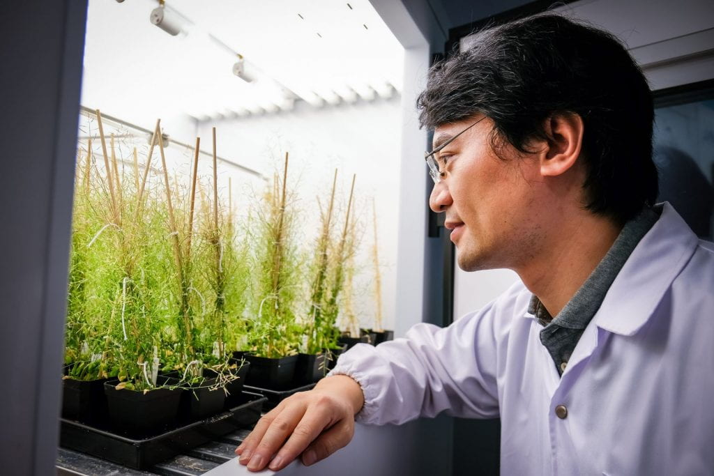 NTU SBS Assistant Professor Miao Yansong, one of the first of nine life scientists to join the inaugural Global Investigator Programme at the European Molecular Biology Organisation