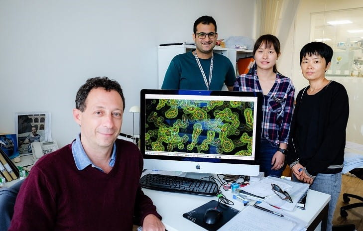 NTU scientists uncover structure of key pneumonia virus enzyme, suggesting a route for new antiviral treatments