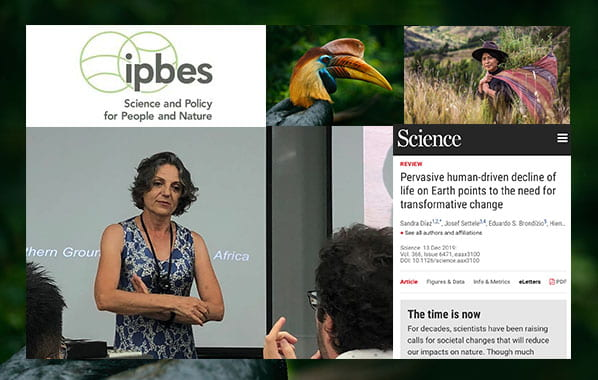 ASE visit by IPBES co-chair Professor Sandra Diaz – one of 10 scientists that mattered most in 2019