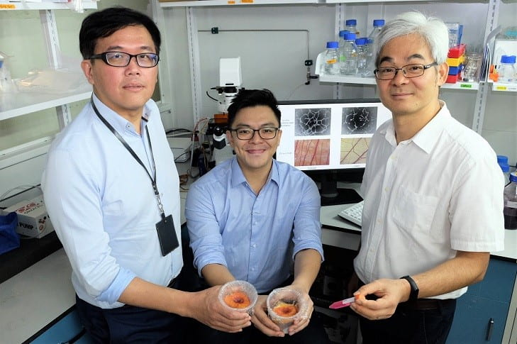 NTU Singapore scientists find easier way to harvest healing factors from adult stem cells in the lab
