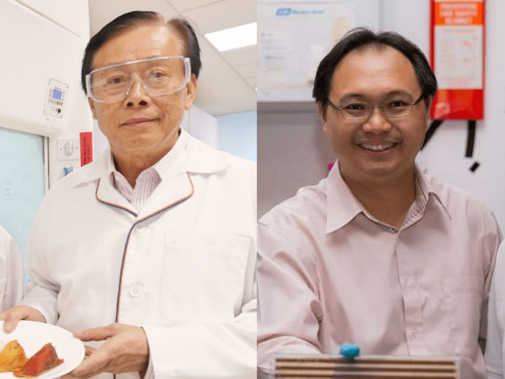 Founding Dean of SPMS Prof Lee Soo Ying appointed Professor Emeritus, Prof Sum Tze Chien appointed as new IAS Director
