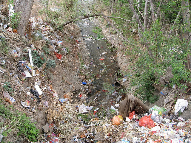 how human activities damage our planet Do you know how our trash affects the whole planet in this article, we look at the ways that plastics & chemicals pollute our most sensitive environments.