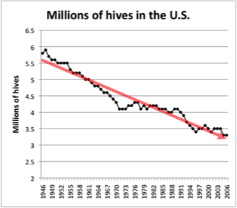 Insect Population Decline Nature Com