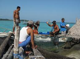 Fishing communities in Indonesia.