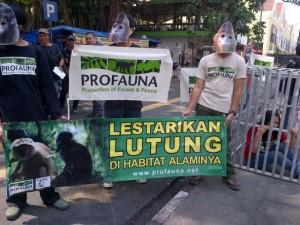 Supporters in Javan Langur masks.