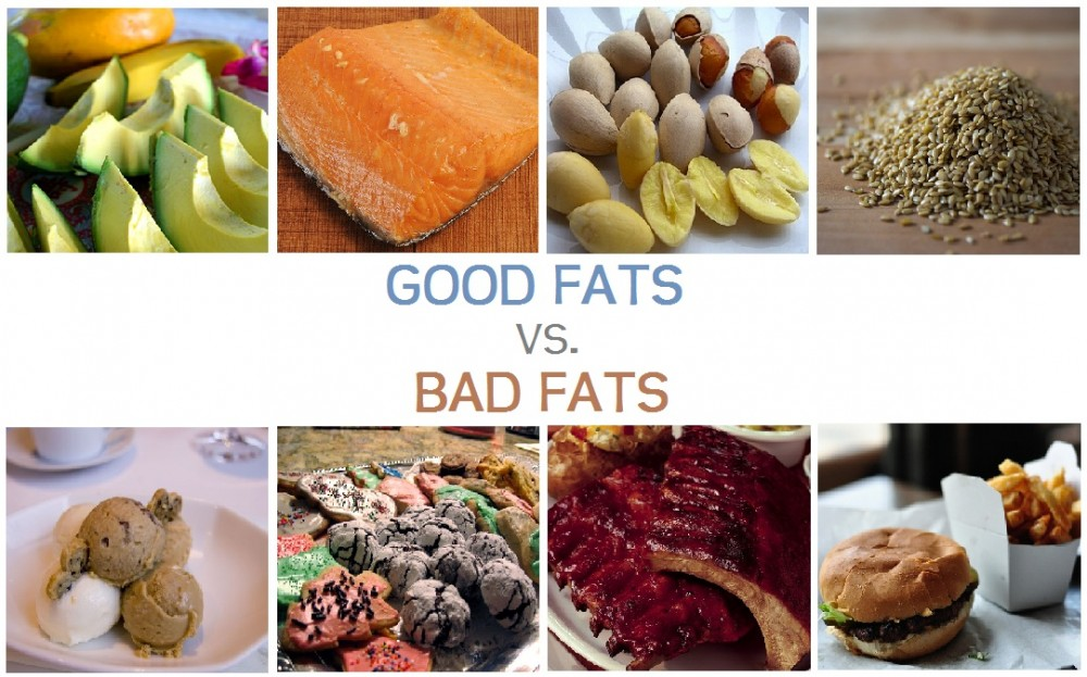 CM8001 Group 8 | FATS & THEIR IMPACT ON SOCIETY