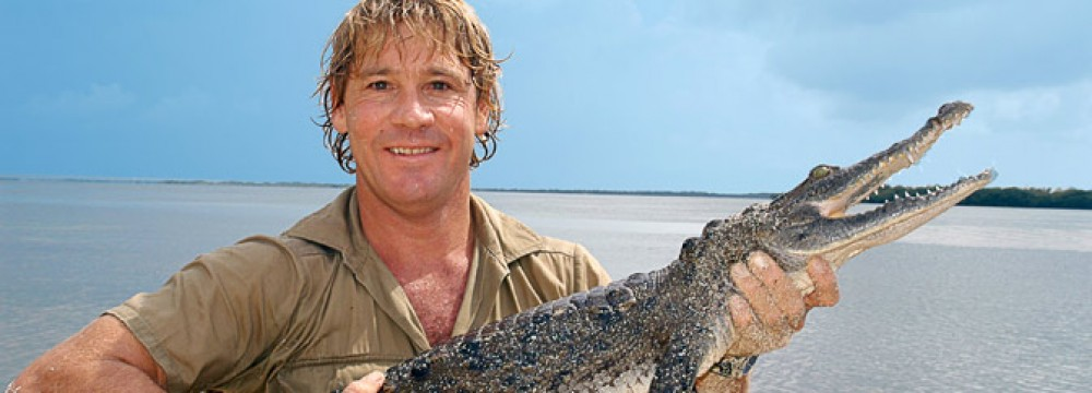 steve irwin - photo #12