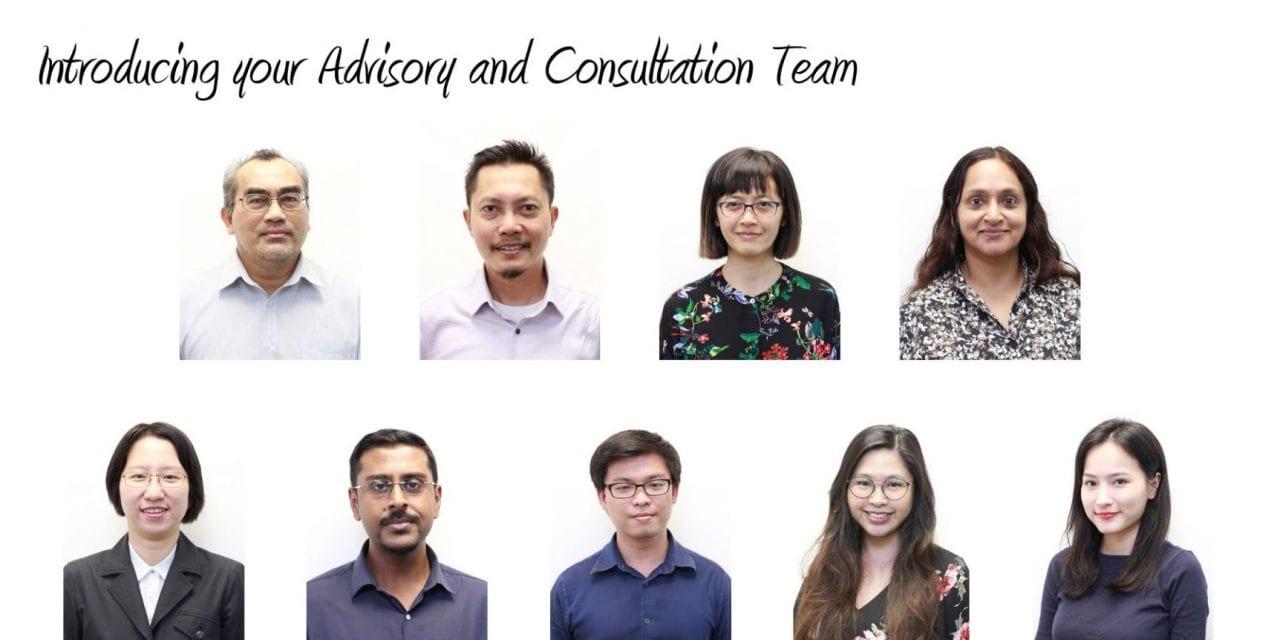 What do we do: Advisory and Consultation