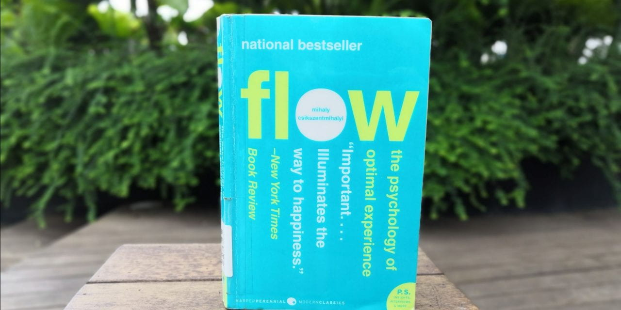 Review and Summary: Flow by Mihaly Csikszentmihalyi