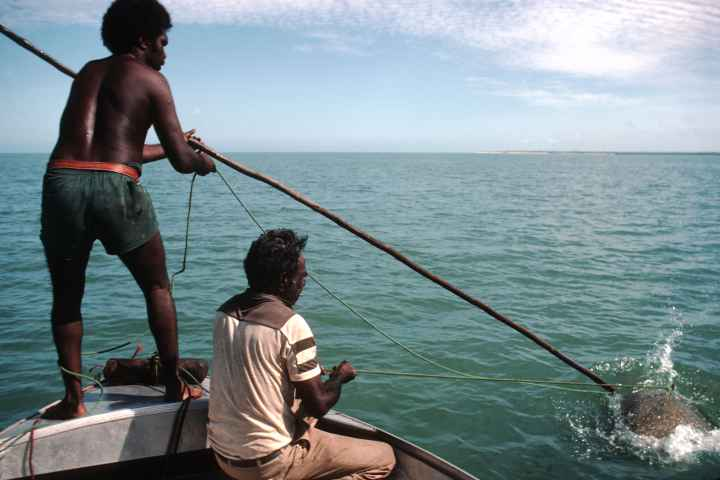 Turtle hunting is allowed under agreements with the GBRMPA. (Photgraph by Ludo Kuipers) (http://www.ozoutback.com.au/Australia/hunting/slides/1985111003.html)