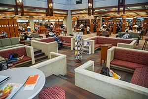 Library-Couches