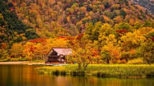 house on a riverbed in autumn