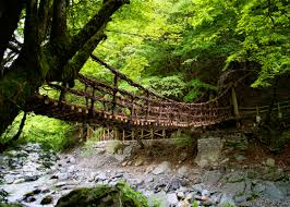 Wooden bridge across a canyon in the forest