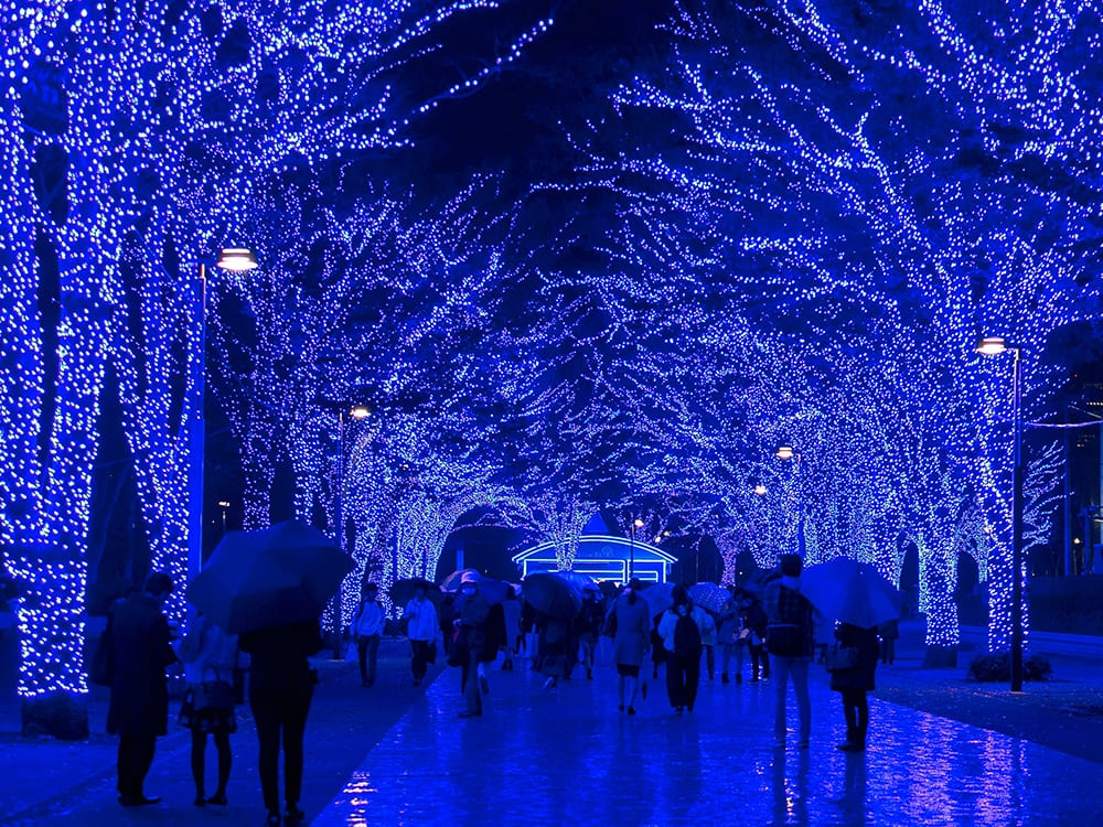 People walking underneath trees with Christmas lights at night
