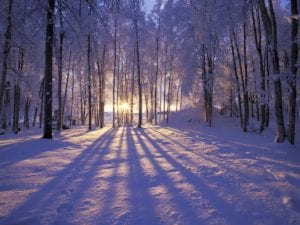 A sun setting on a wintery landscape