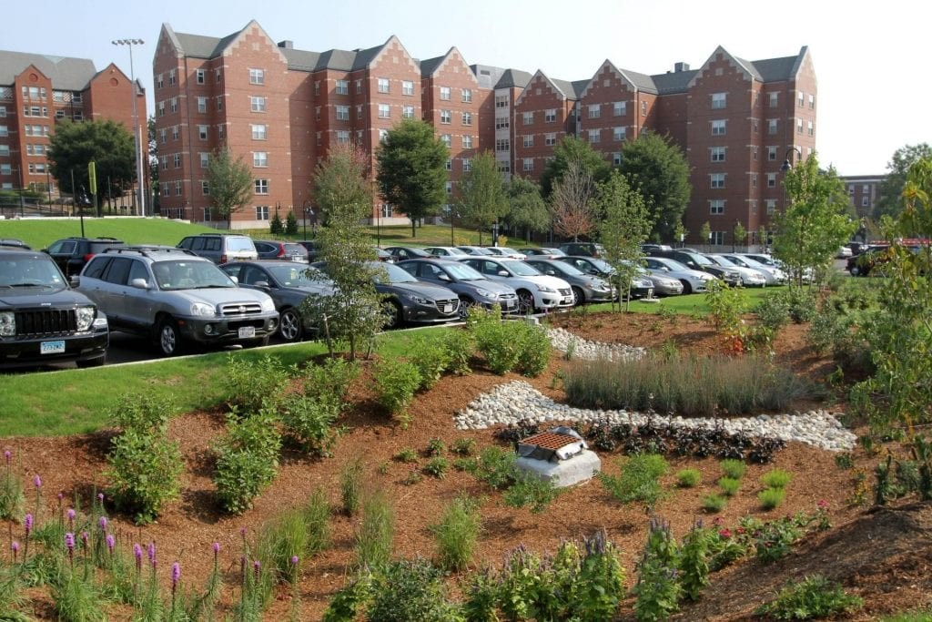 Photo of parking lot outside Suites Hall.